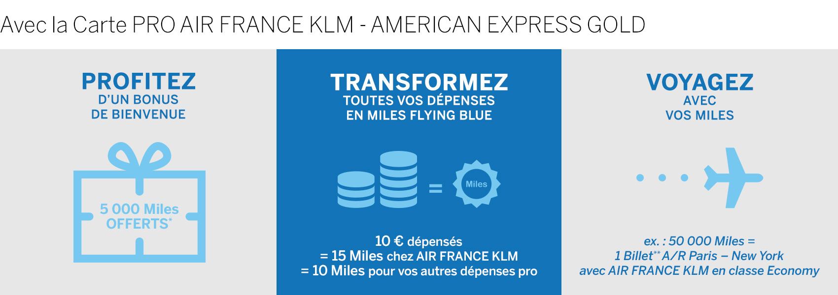 Carte American Express Gold Societe Generale.Carte Pro Air France Klm American Express Gold